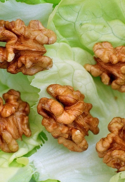 walnuts-dita-bukurie-fytyre-ushqime-receta-keshilla-maska-fytyre-